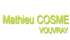 Domaine Mathieu Cosme Logo